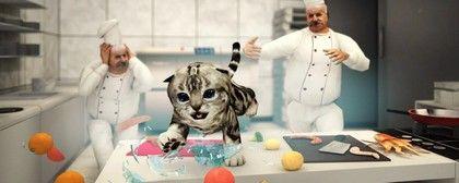 Hravé kotě, které vás nenechá vydechnout - Cat Simulator za 93 %