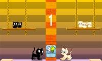 Swing Cat