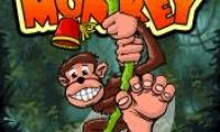 Funky Monkey in Funky Monkeyland