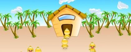 Save Chicks
