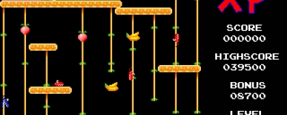Donkey Kong Junior XP