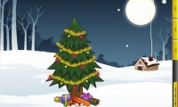 Christmas Tree Evergreen