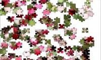 Jigsaw: Radishes