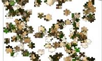 Jigsaw: Iguana Tree
