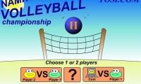 Namnum Volleyball
