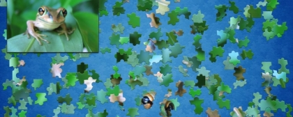 Jigsaw Puzzle Mix