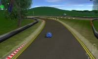 Ringed Drag Strip
