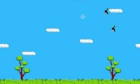 Super Duck Hunt