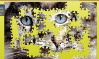 Puzzle Closeup Kitty