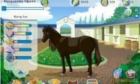 Horse Saga