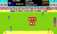 Pixel Cricket Multiplayer