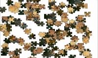 Jigsaw: Crockodile