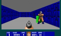 Wolfenstein 3D Headshot