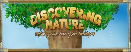 Discovering Nature