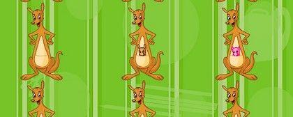 Favorite Kangaroo