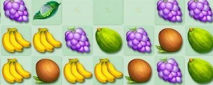 Fruit Jamba