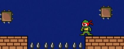 Gravity Ninja Turtle