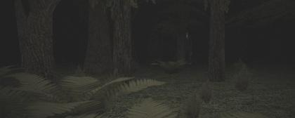 Slender's Woods