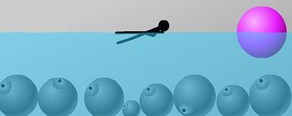 Water Ragdoll 2