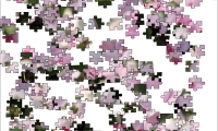 Jigsaw: Soft Pink Flowers
