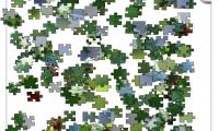 Jigsaw: Limebug