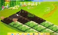 Love Farm