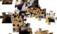 Jaguar Jigsaw Puzzle