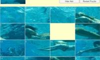 H2O Sliding Puzzle 2