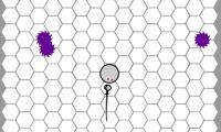 Swarm 2