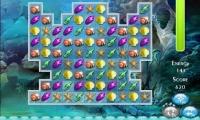 Ocean Princess Puzzle