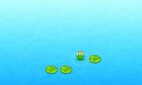 Puz Frog