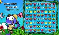 Butterfly Zamba