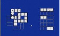 Domino Puzzle