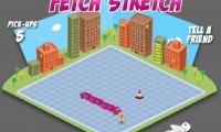Fetch N' Strech