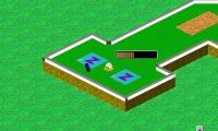 Sharpshooter's Miniature Golf